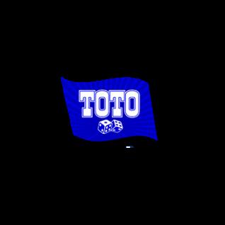 Букмекерская контора Тотобет — описание, отзывы, тактики